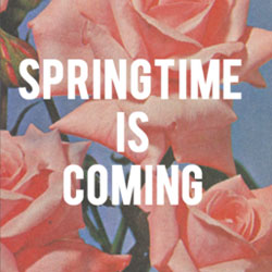 Springtime is coming