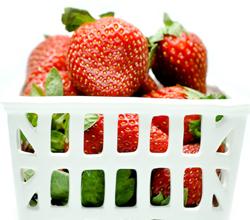 porcelain berry basket